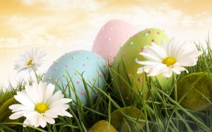 Closeup of decorated easter eggs in the grass with daisies
